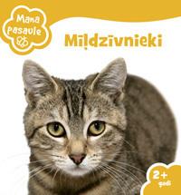 20100729_643_MP-Mildzivnieki-m_original.jpg