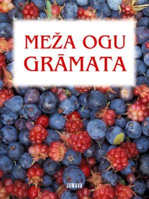 Meza_ogu_gramata_original.jpg