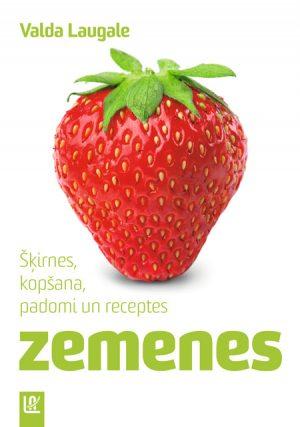 Zemenes_original.jpg
