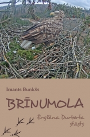 brinumola_original.jpg