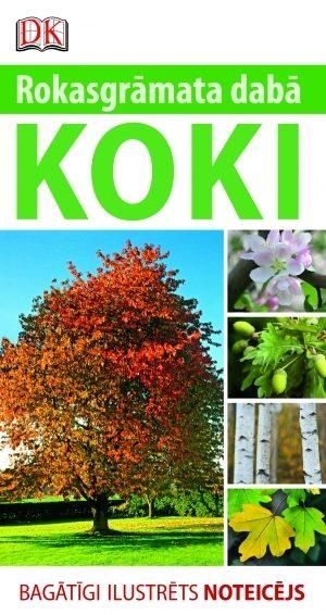 koki_original-1.jpg