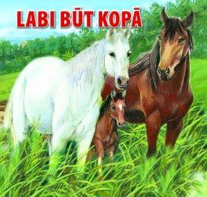 labi-buut-kopaa_original.jpg