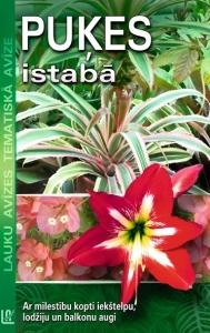 ta_pukes_istaba-0x7y372w581h300x189vert_original.jpg